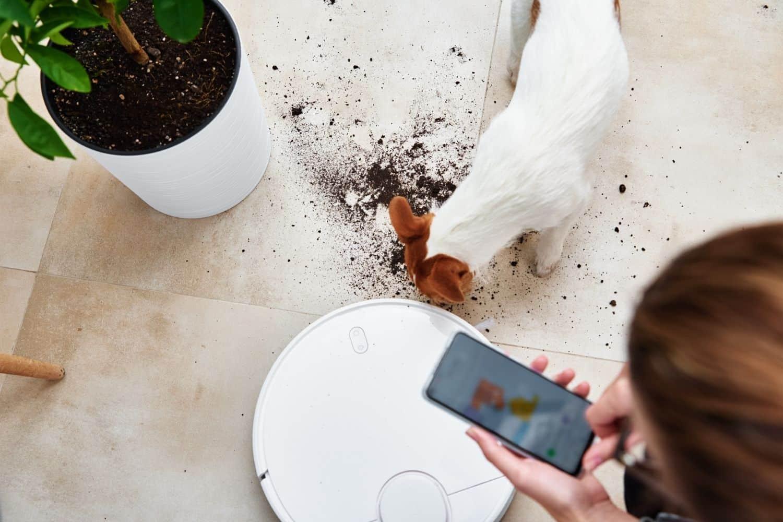 Saugroboter fuer Hundenhaare mit App